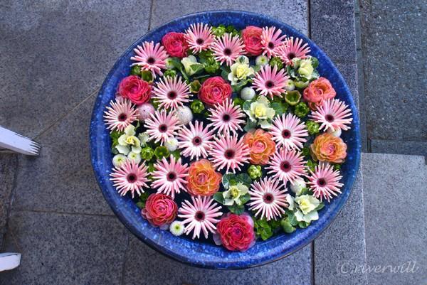 行田八幡神社の花手水 Hana-chozu Flower basin decoration in Gyoda Hachiman Shrine in Saitama pref, Japan